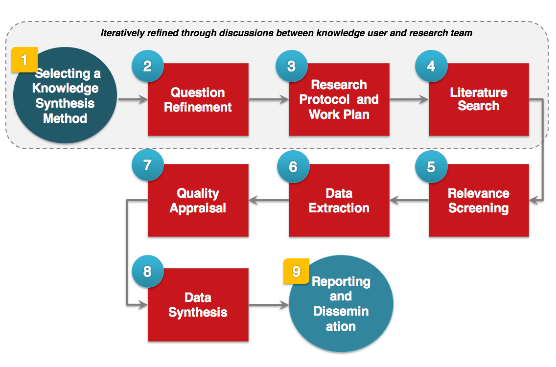 Systematic Review Process Diagram